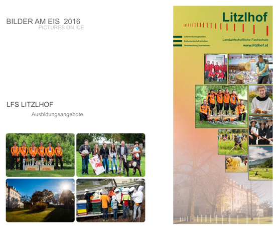 bae16_lfs_litzlhof550